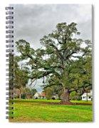 Louisiana Winter 2 Spiral Notebook