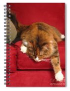 Lounging Spirit Spiral Notebook