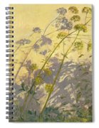 Lovage Clematis And Shadows Spiral Notebook