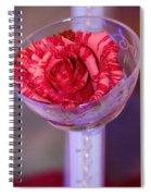 Love And Friendship  Spiral Notebook