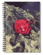 Love And Hard Times Spiral Notebook