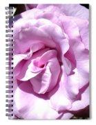 Love At First Sight Spiral Notebook