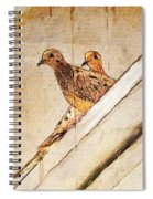 Love Birds On My Balcony Spiral Notebook