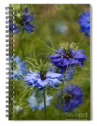 Love In A Mist Spiral Notebook