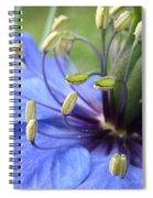 Love-in-a-mist Spiral Notebook