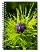 Love-in-the-mist Spiral Notebook