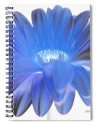 Love Is A Gift Spiral Notebook