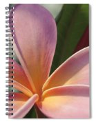 Love Is The Beauty Of The Soul  Spiral Notebook