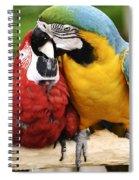 Love Parrotts Spiral Notebook