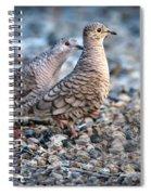 Love Peck Spiral Notebook