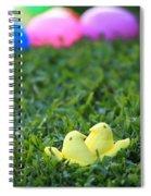 Love Peeps Spiral Notebook