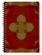 Love Receiver Spiral Notebook