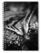 Eclectus Parrot  - Eclectus Roratus Spiral Notebook