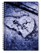 Love Reveals Truth Spiral Notebook