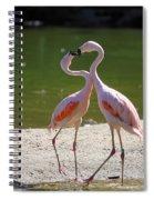 Love Spiral Notebook