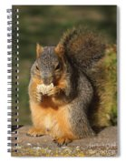 Love Those Frosted Mini Wheats  Spiral Notebook