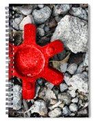 Lovejoy Spiral Notebook