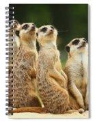 Lovely Group Of Meerkats Spiral Notebook