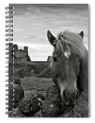 Lovely Horse And Tantallon Castle Spiral Notebook