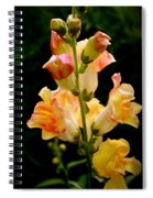 Lovely In Yellow Spiral Notebook