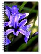 Lovely Iris Spiral Notebook
