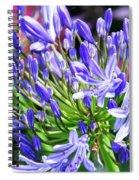 Lovely Lavender Spiral Notebook
