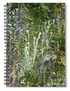 Lovely Lichens Spiral Notebook