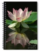 Lovely Lotus Reflection Spiral Notebook