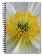 Lovely White Flower Square Spiral Notebook
