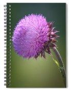 Loving Lavender Spiral Notebook