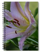 Loving Lilies Spiral Notebook