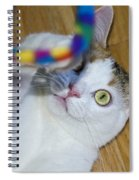 Loving The Rainbow Psychedelic Toy.. Spiral Notebook