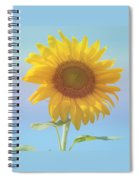 Loving The Sun Spiral Notebook