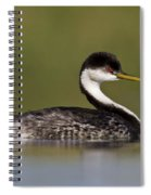 Low Angle Western Grebe Spiral Notebook
