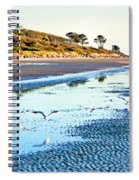 Low Tide At Jekyll Island Spiral Notebook