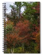 Lowcountry Fall Color Spiral Notebook