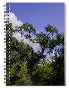 Lowcountry Life Oaks Spiral Notebook