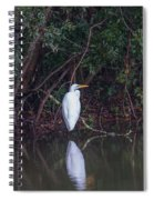 Lowcountry Pond Life Spiral Notebook