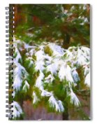 Lowcountry Snow Spiral Notebook