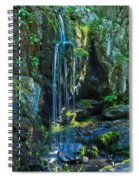 Lower Doyle River Falls Spiral Notebook