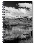 Lower Owens River Spiral Notebook