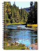 Lower Truckee River Spiral Notebook