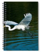 Lucky Egret Spiral Notebook