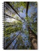 Lumberjack Heaven Spiral Notebook