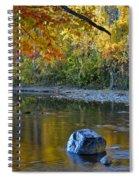 Luminescent Spiral Notebook