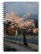 Luminous Almond Tree Spiral Notebook