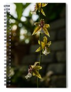 Luminous Chain Of Orchids Spiral Notebook