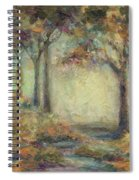 Luminous Landscape Spiral Notebook