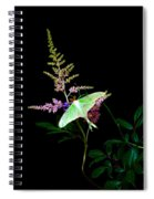 Luna Moth Astilby Flower  Spiral Notebook