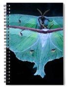 Luna Moth Mirrored Spiral Notebook